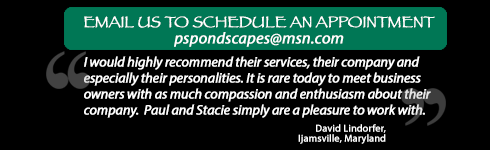 Schedule a Visit Today and read a Testimonial from a satisfied client